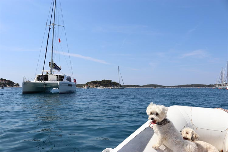 SAILING DIARY- Day before our sailing trip